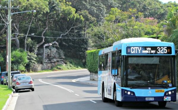 325 bus Watsons Bay to Walsh Bay