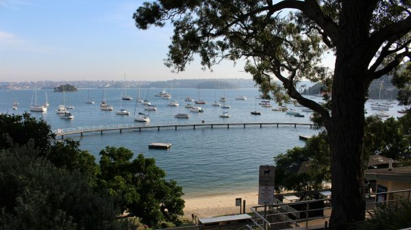 Murray Rose Pool Double Bay