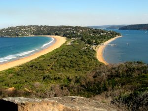 Palm beach from the headland