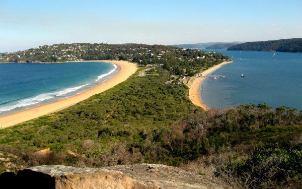 Palm beach from the headland