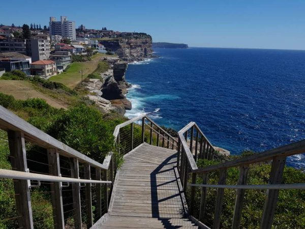 Federation Cliff to Watsons Bay walk wooden stairs
