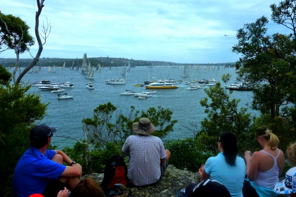 Watching the Sydney to Hobart race from the shoreline at Mosman