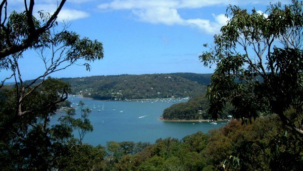 Palm Beach and Pittwater view