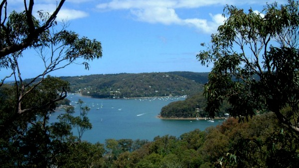 pittwater view