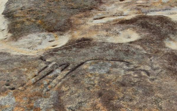 Bundeena Rock Art Sydney