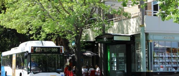 389 Bus route Sydney for tourists