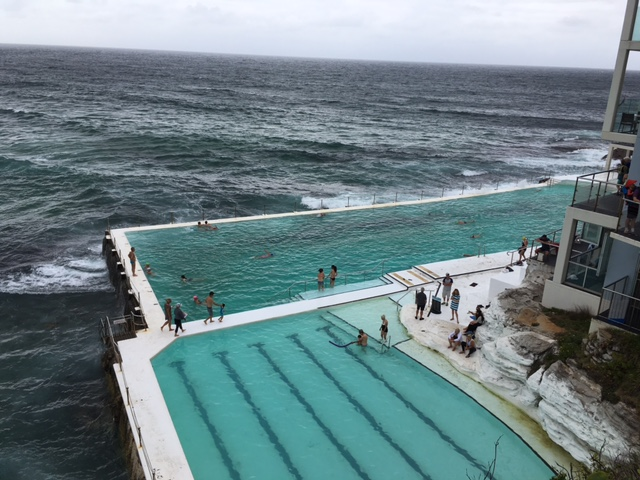 Iceburgs swimming club Bondi Beach