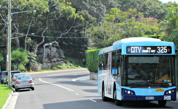 325 bus Watsons Bay to Walsh Bay Sydney public transport includes over 400 bus routes