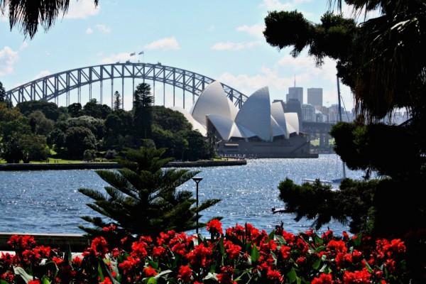 Botanic Gardens Opera House View