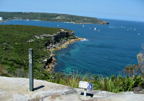 Spit Bridge to Manly track is a perfect spot to propose