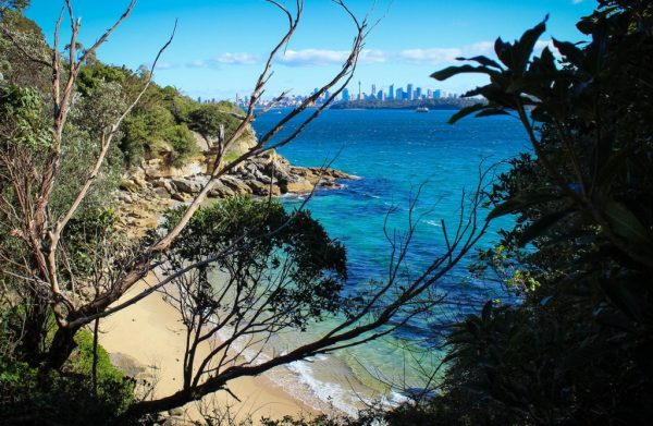 The view of the city from Lady Bay Beach