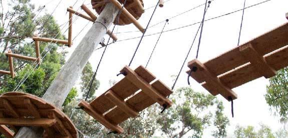 Wild Ropes - Image from Taronga Zoo