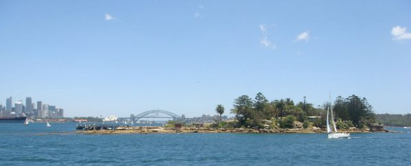 Shark Island view