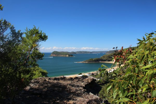 Mount Ettalong and Pearl Beach lookout