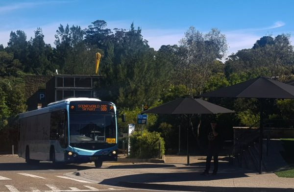 Blue Mountains public bus to scenic world