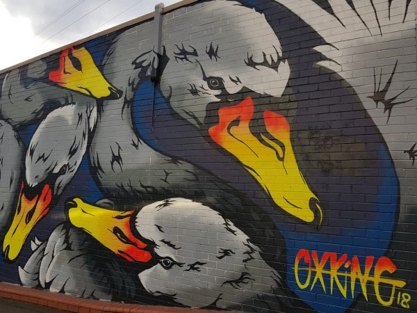 Street Art in Sydney Australia Caringbah Walk the Walls Ox King Steven Nuttal