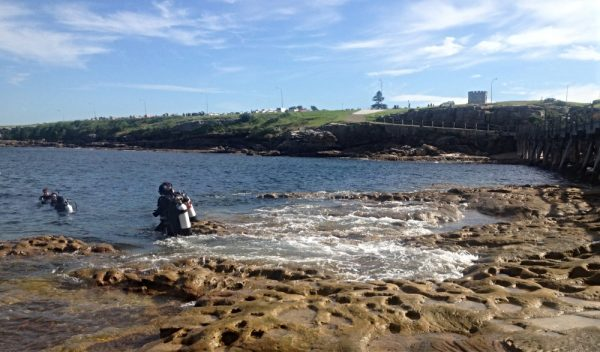 Scuba Diving at Bare Island La Perouse Sydney