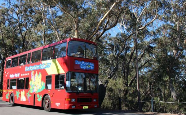 Hop on Hop off bus in Blue Mountains