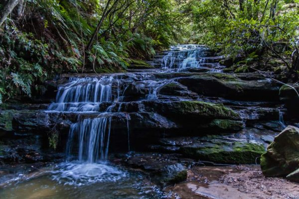Leura Cascades in the Blue Mountains