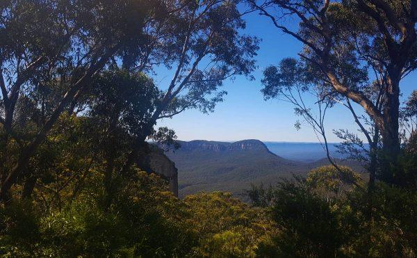 narrow neck lookout blue mountains