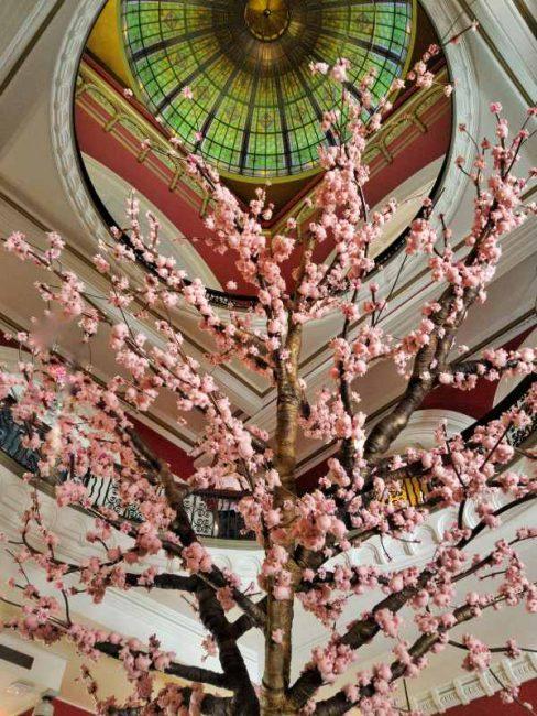 QVB Lunar New Year Peach Blossom Tree