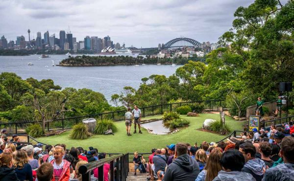 Taronga Zoo Birdshow with view Sydney harbour