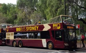 Sydney Hop on Hop Off Bus