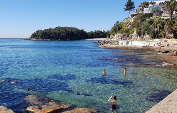 Shelly Beach Snorkelling Sydney