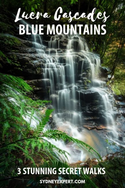 picture of Leura Cascades with text overlay Blue Mountains walks Leura Cascades