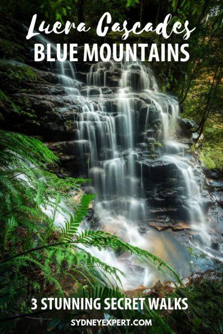picture of Leura Cascades with text overlay Blue Mountains walks Leura Cascades