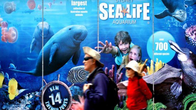 Sydney Attraction Passes