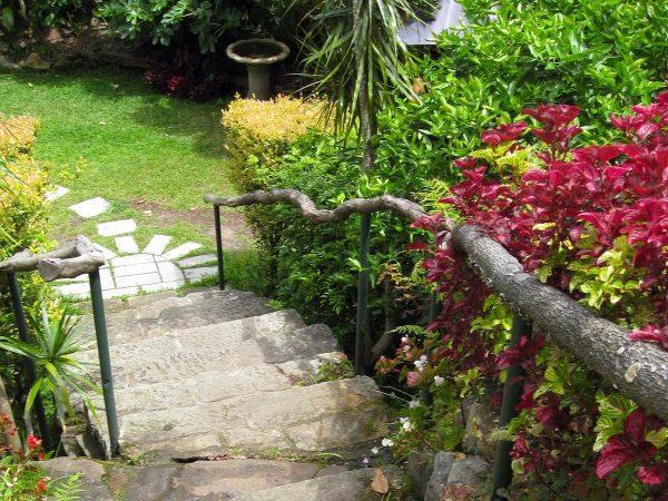 Wendy Whiteley's Secret Garden at Lavender Bay