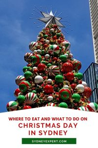 Christmas Day in Sydney summer tree