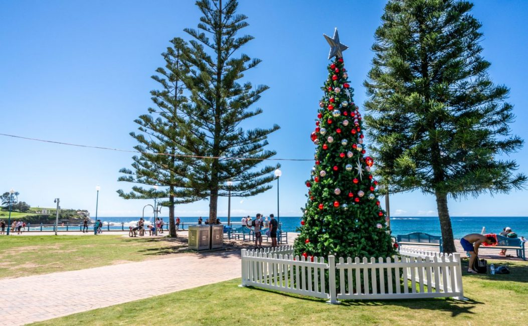 Christmas Tree at Coogee Beach Australia