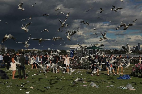 Image of racegoers during a storm with seagulls and dark clouds