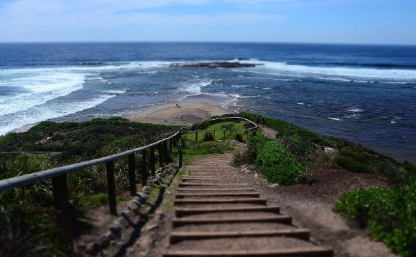 Long Reef Headland Coastal Walk in Sydney