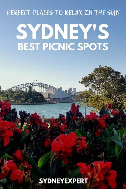 21 picnic spots in Sydney Botanic