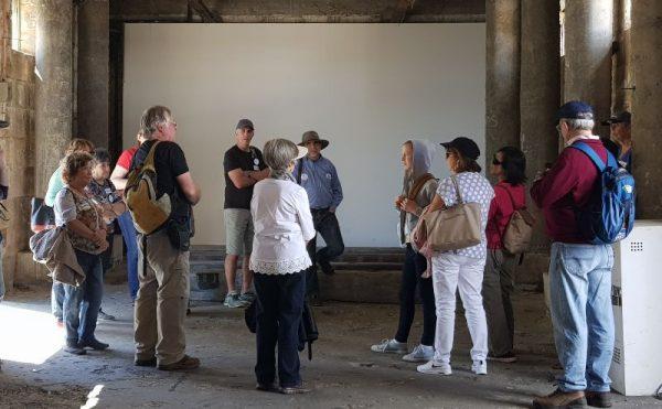 Cockatoo Island History Tour