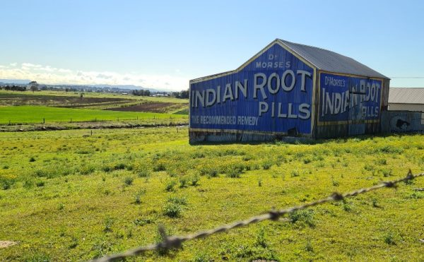Dr Morses Indian Root Pills Morpeth Road