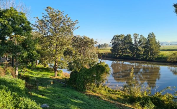A getaway to Maitland and Morpeth offers lush green surroundings