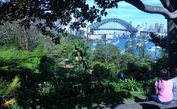 Wendys Secret Garden Sydney