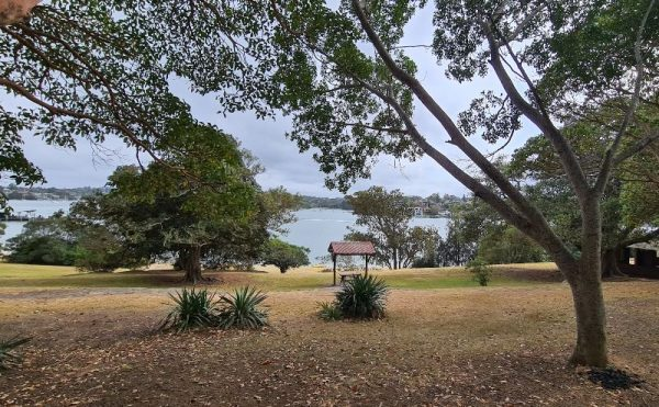 Cabarita Park PIcnic tables