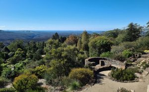 Mount Tomah Botanic Garden Blue Mountains from the lookout