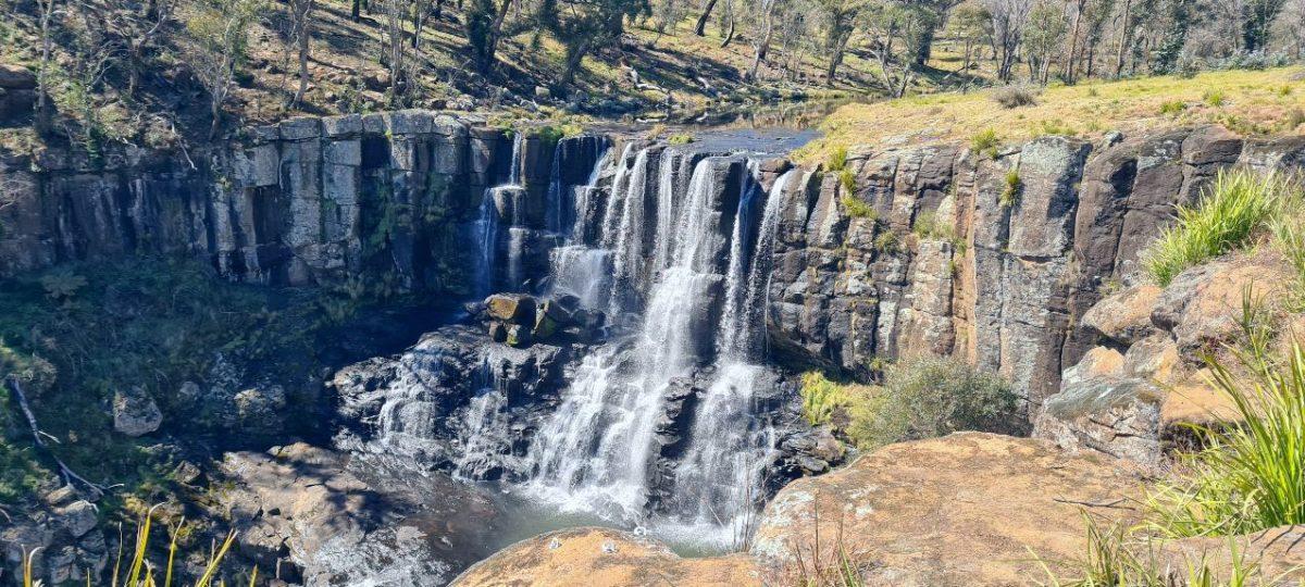 Ebor Falls NSW Waterfalls