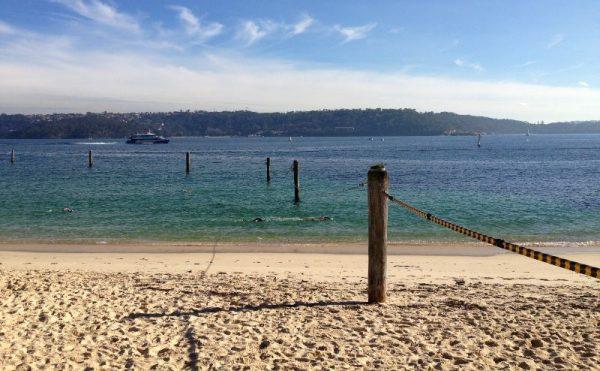 Shark Beach Neilsen Park Sydney