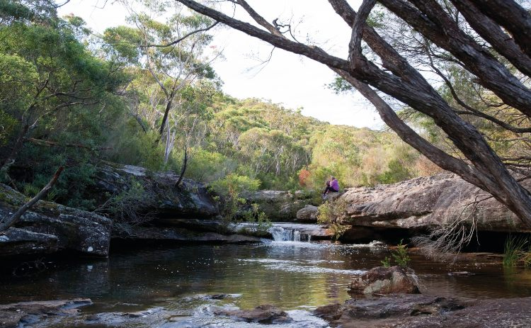 Kingfisher Pool Heathcote National Park