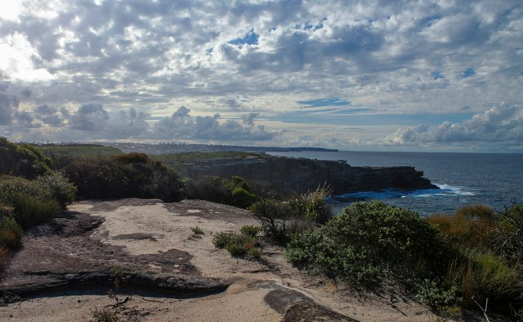 Walking track Malabar Headland National park