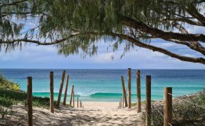 Visit Forster One Mile Beach