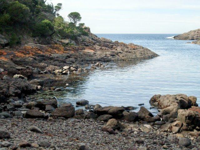 Bushrangers Bay Bass Point
